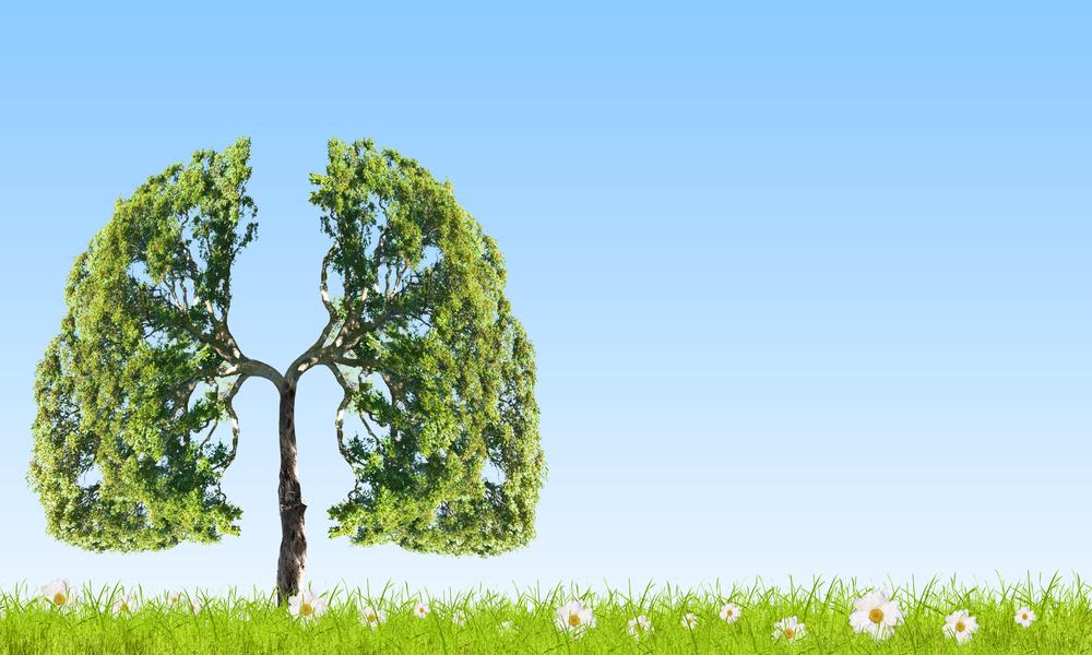 temiz akciğerler