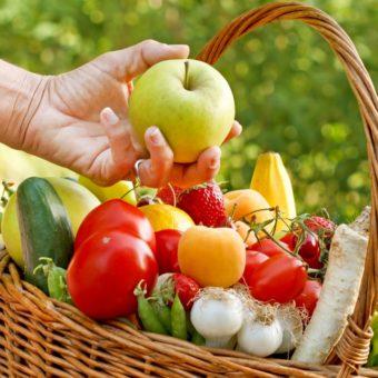 organik besin