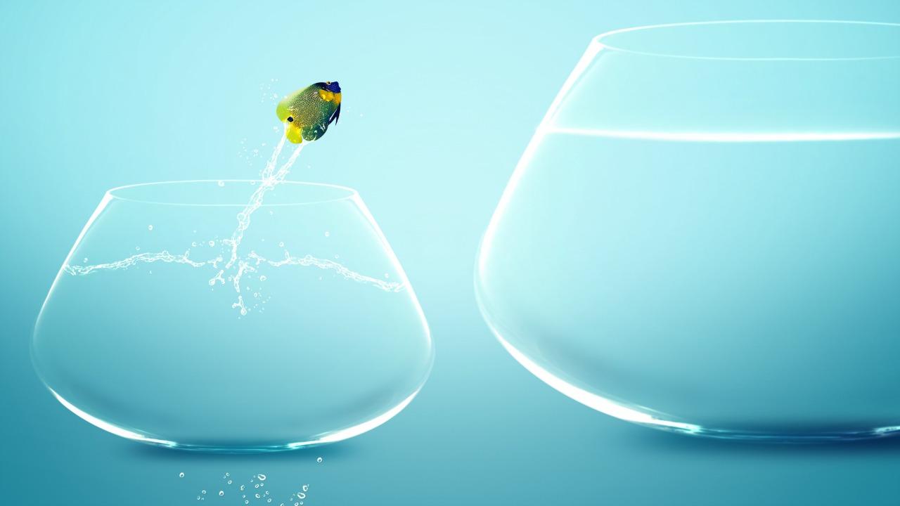 Akıllı riskler almak hayatınızı ve mutluluğunuzu nasıl etkiliyor?