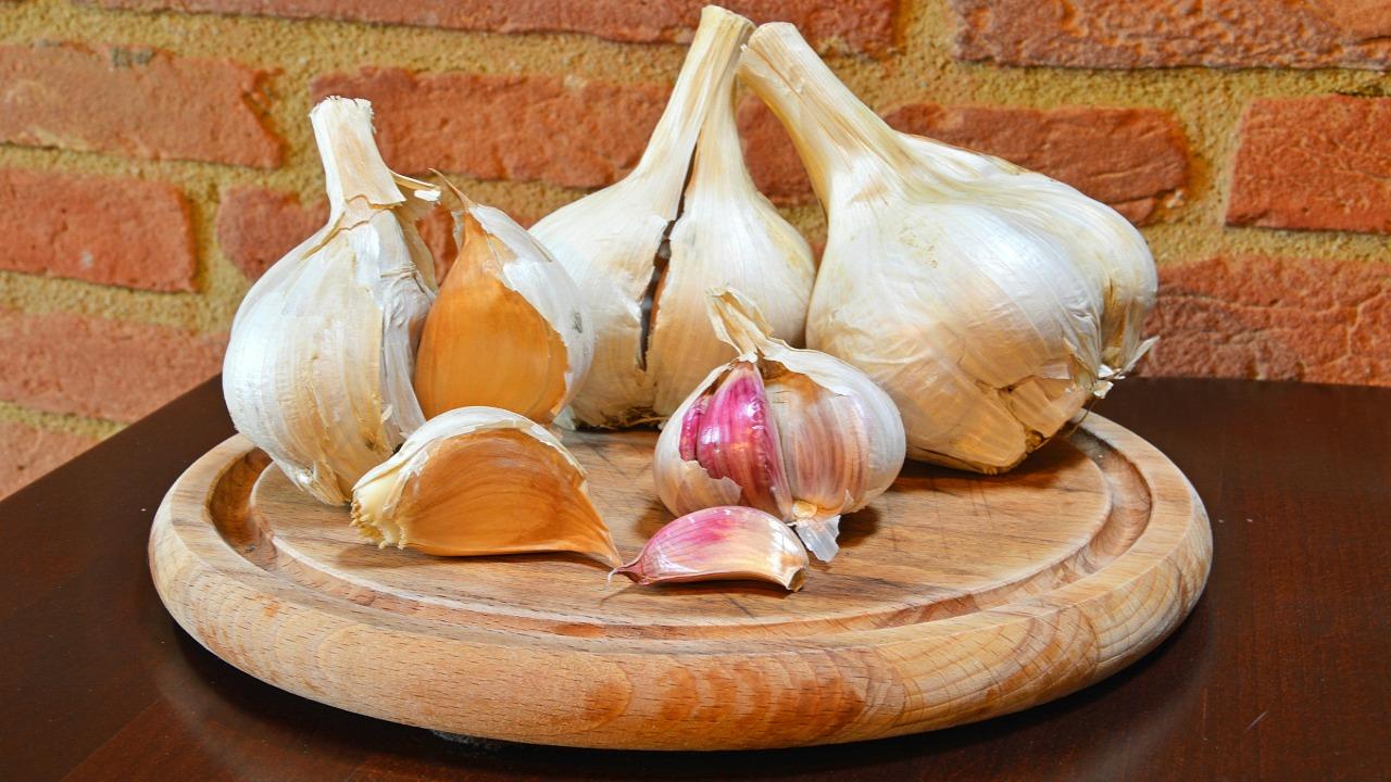 aglione sarımsağı