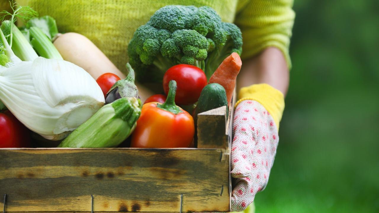 doğal meyve sebze üretme