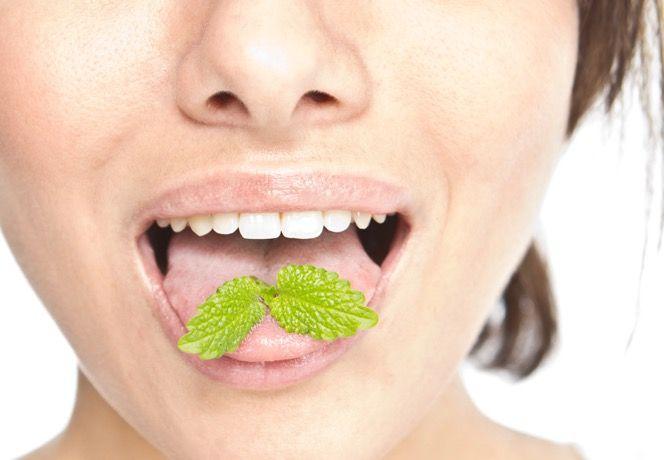 chewing-on-mint.jpg.838x0_q80