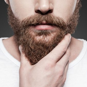 sakal yagi
