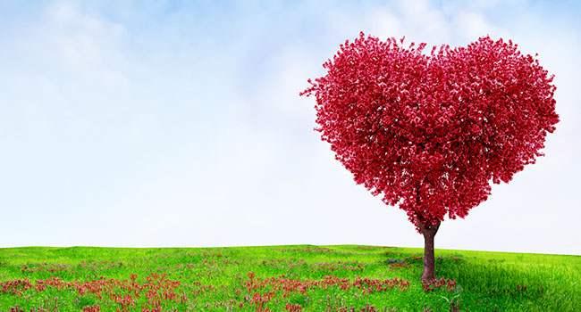 kalp nefesi (3)
