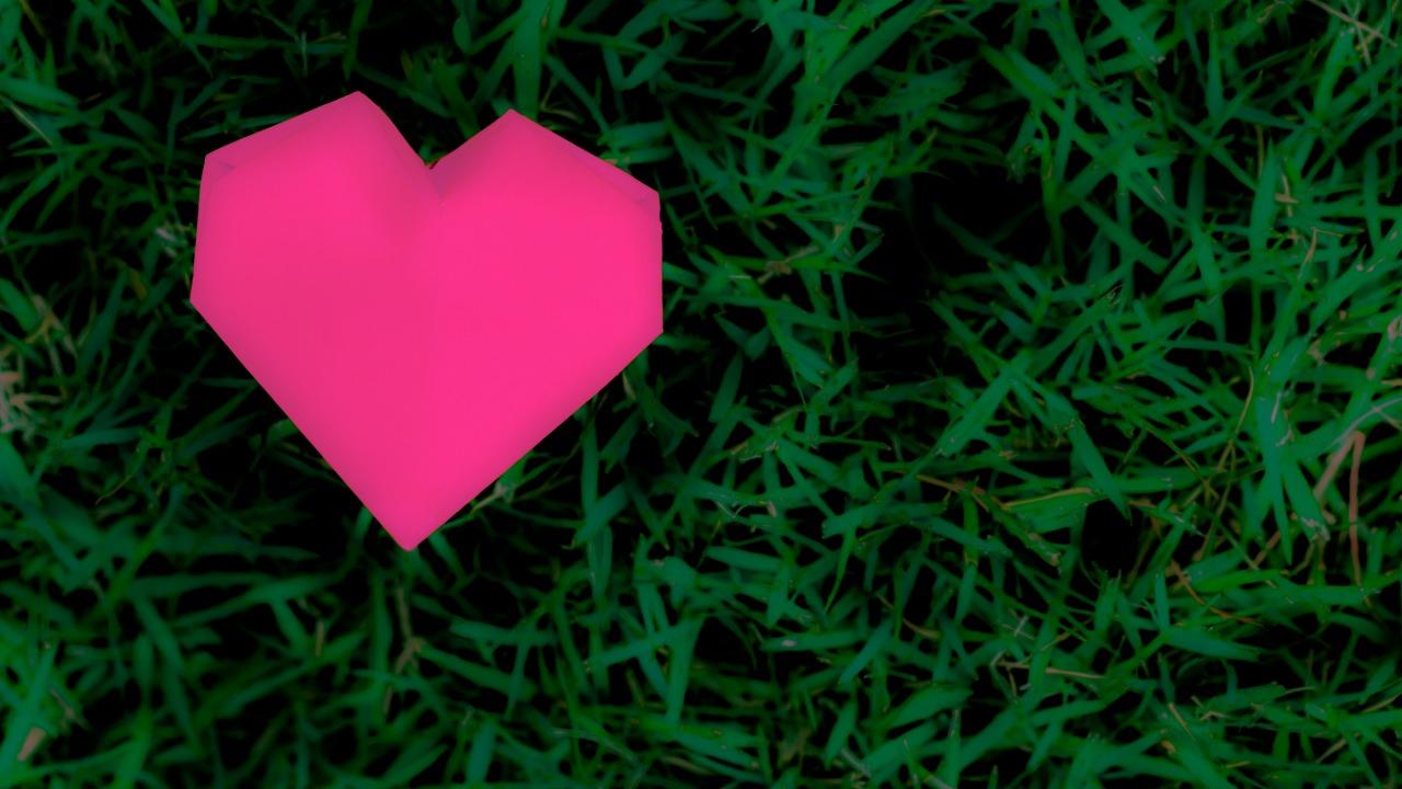 İstek mi arzu mu? İstek ve arzu arasındaki farklar neler?