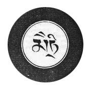 sinem er - maitri (3)