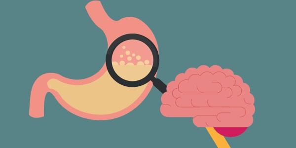 Brain-gut-connection