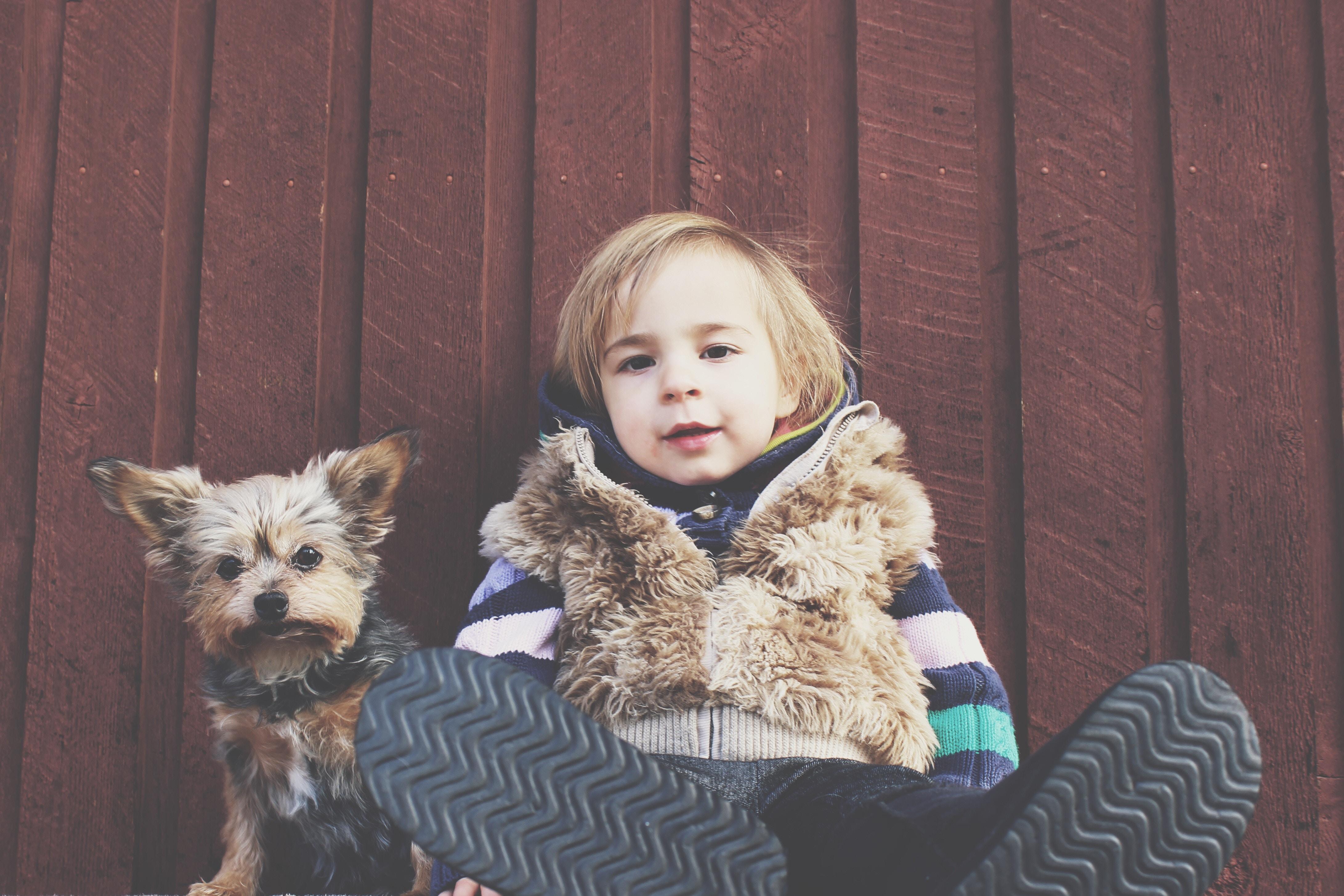 Evcil hayvanların çocuklardaki etkisi nedir