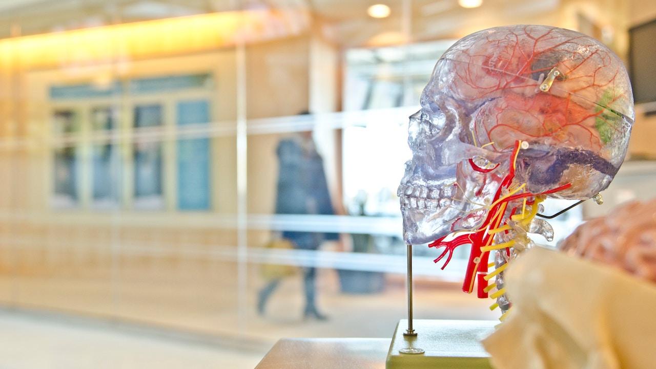 Tek bir egzersizle beyin gücünü geliştirmek mümkün