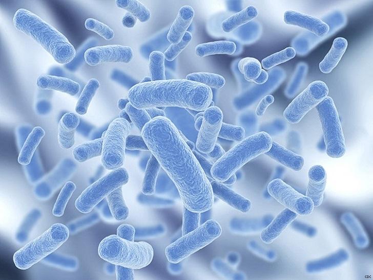 Bizi biz yapan aslında bakterilerimiz mi?