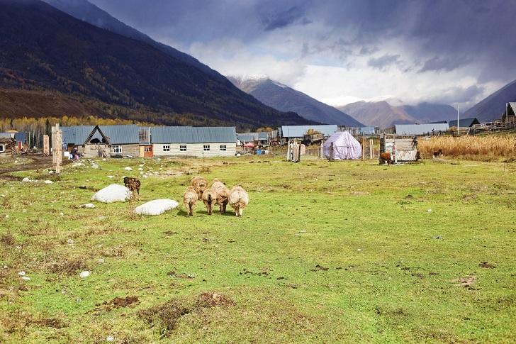 Sürdürülebilir hayatı desteklerken ekolojik yaşam imkanı sunan çiftlikler