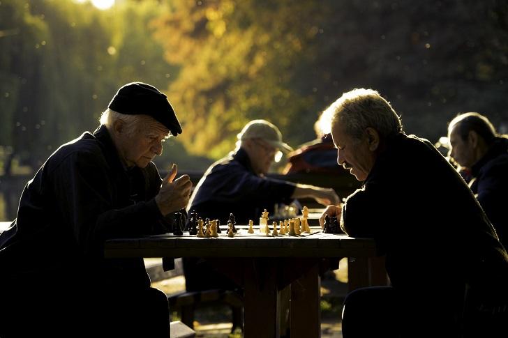 Farelerde Alzheimer tedavisi yapıldı
