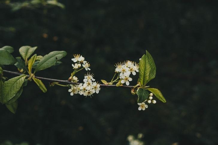 Affetmek üzerine: Her şey insanları olduğu gibi kabullenmekle başlar