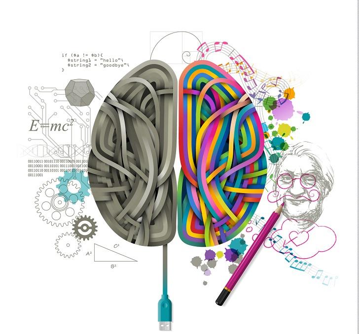 Bir beyinde iç içe iki apayrı yapı: Beynin iki yarısı