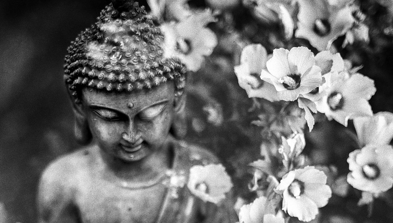 Buda'nın öğretilerinde hakiki aşkın 4 temel unsuru
