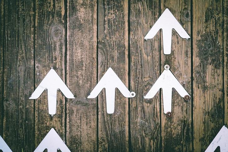 Hayata dair: Başarıya fedakarlık olmadan ulaşmak mümkün mü?