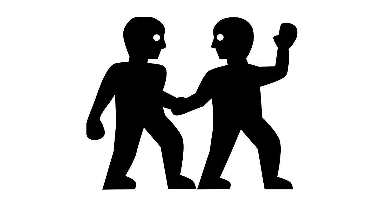 Koç ve İkizler - iki kişiliğin çatışması