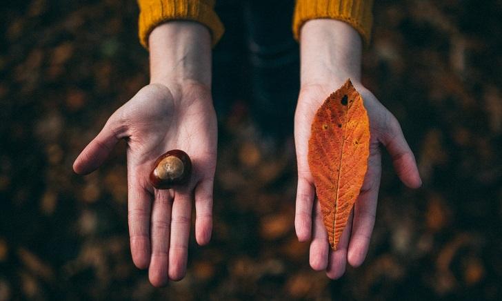 Tek seçim, tek yol, tek yön, tek sonuç: Tek hayatımız var