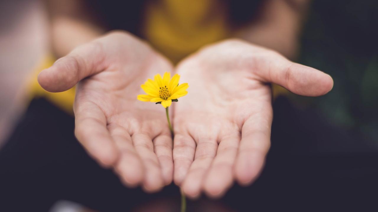 Karşılığını beklemeden hayatlara dokunabilmek: Kalpten vermek