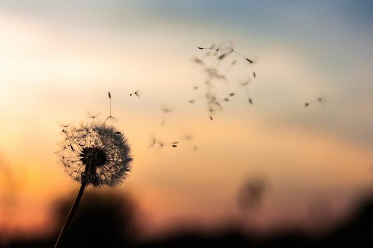 Kendinize iyilik yaparak mutlu olmak için zihninizi eğitin