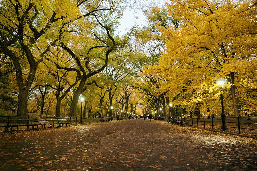 Şairler Yolu, Central Park