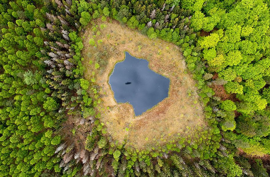 Orman Gölü, Polonya