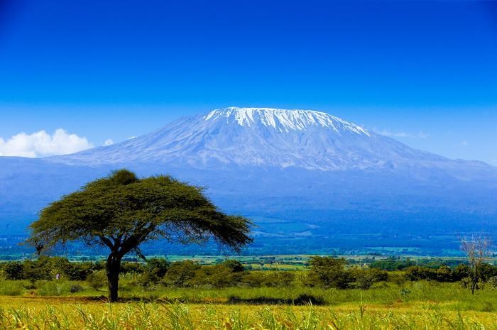 Kilimanjaro, Tazmanya