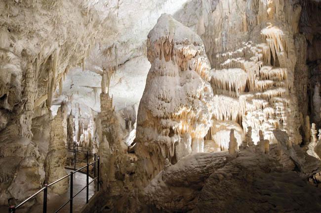 Postojna Mağarası, Slovenya