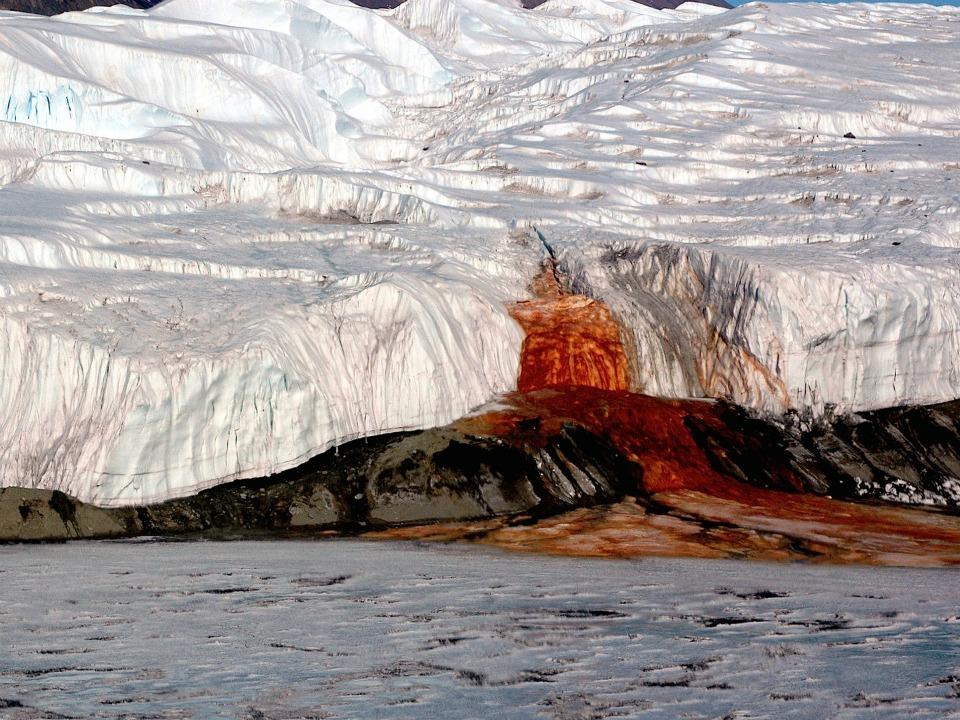 Taylor Buzulu, Antarktika