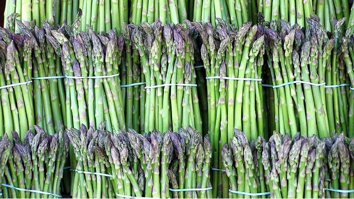 asparagus bitkisi nasil yetisir