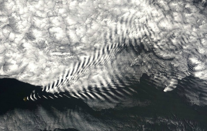 wave cloud amsterdam