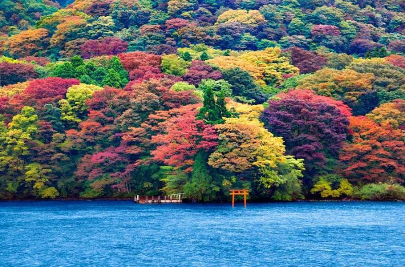 Ashi Gölü, Japonya