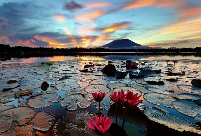 Sampaloc Gölü, Filipinler