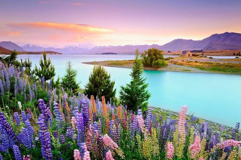 Tranquil Gölü, ABD