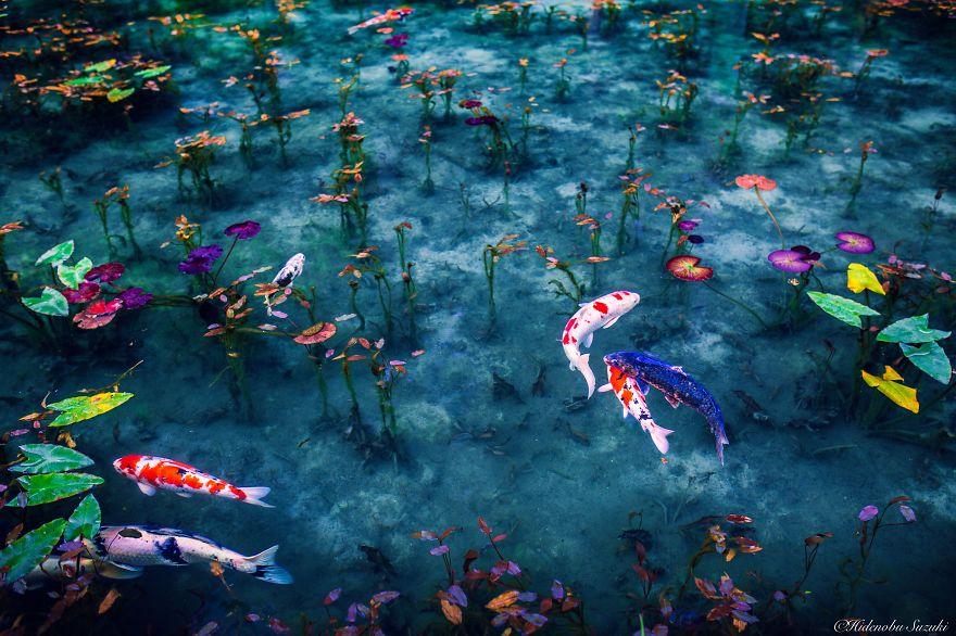 Hidenobu Suzuki fotoğrafları