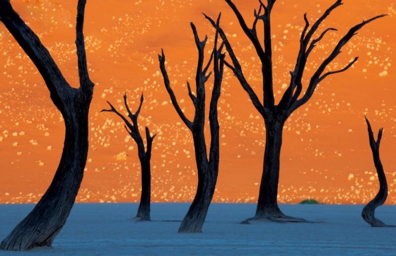 Namibya'dan tabloya benzer bir fotoğraf