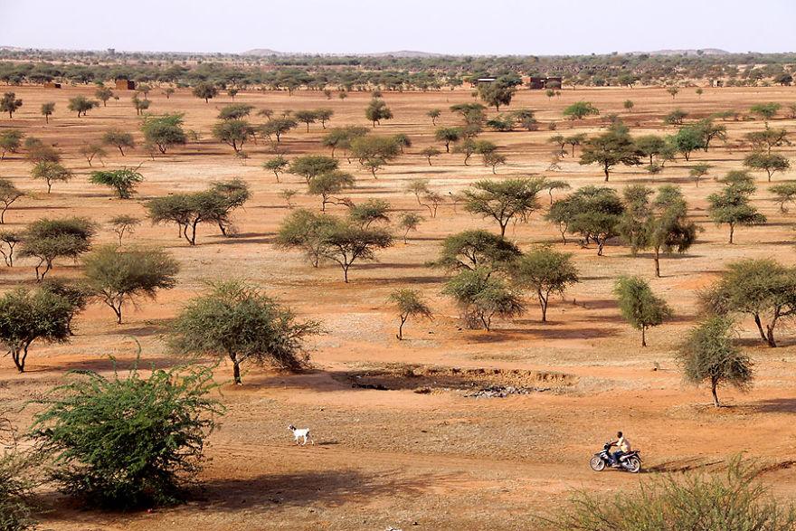 Çalıların arasında, Burkina Faso
