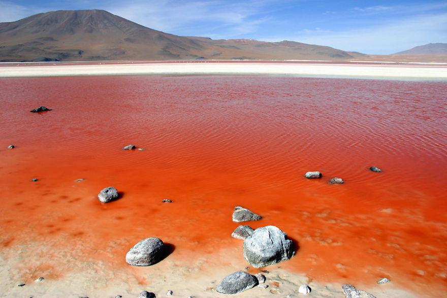Laguna Colorada, Güney Lipez, Bolivya