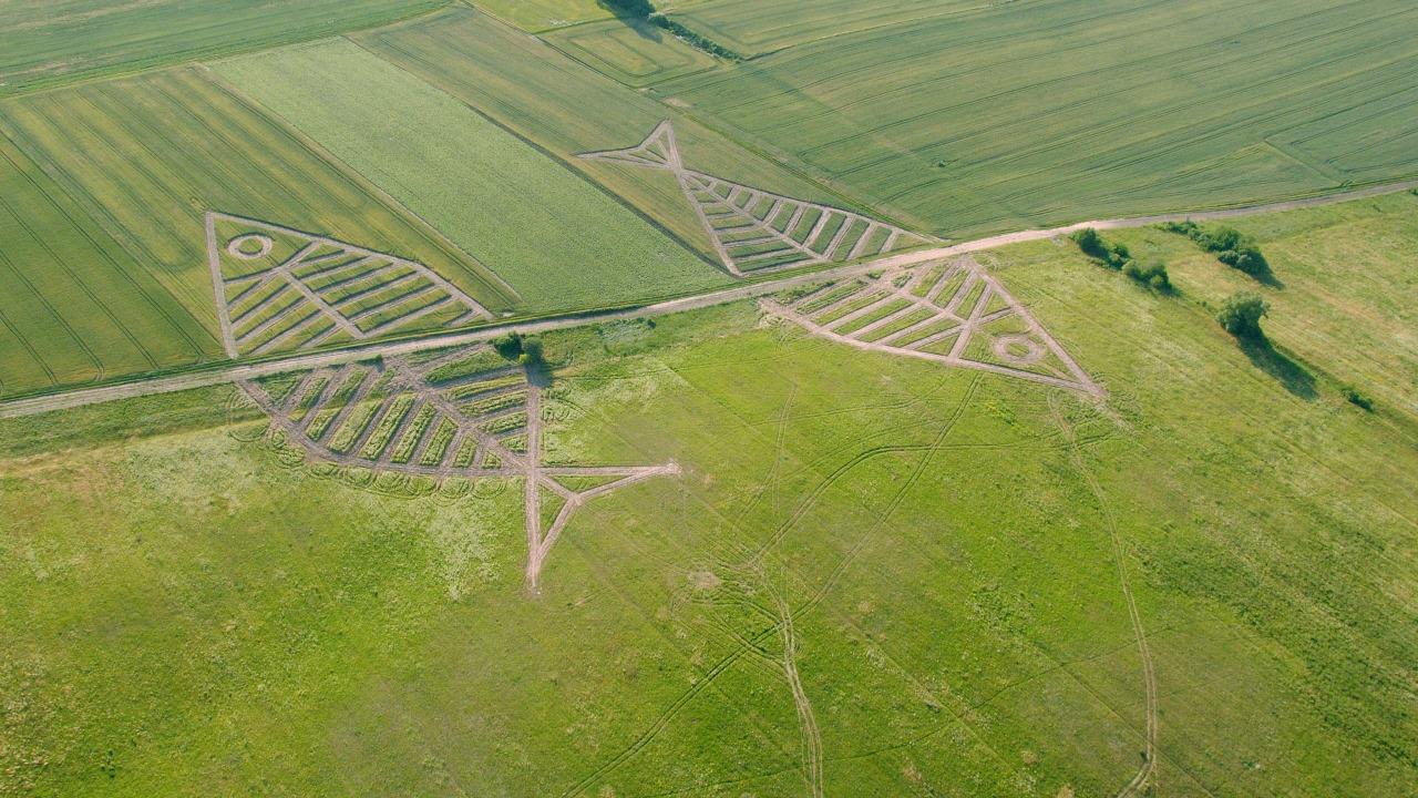 polonya ukrayna sınır