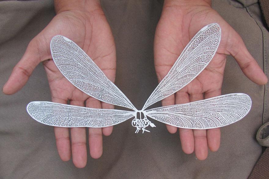 kağıt yusufçuk