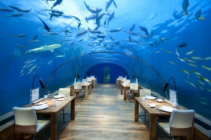 maldives ithaa underwater restoran