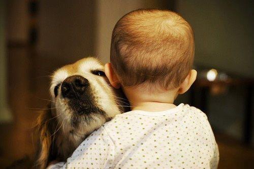 çocuk hayvandostluğu