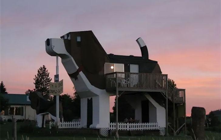Köpek Ev, Montana, ABD.