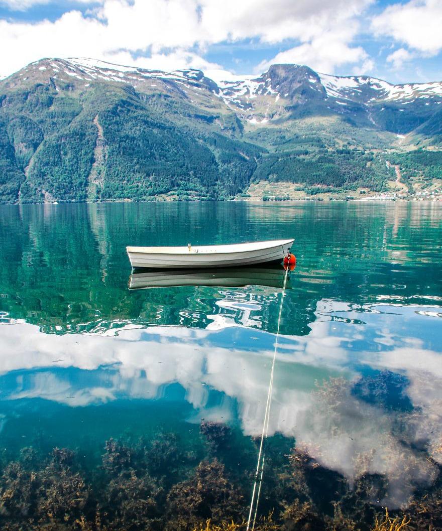 norvec deniz anasi gorunumlu fjord