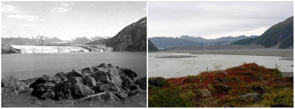 Caroll Buzulu, Alaska