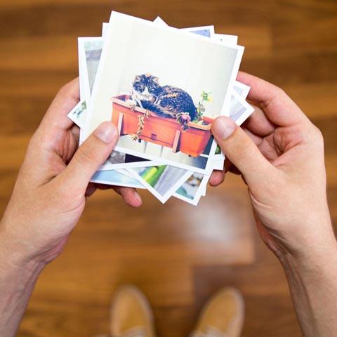 sosyopix foto kartlar