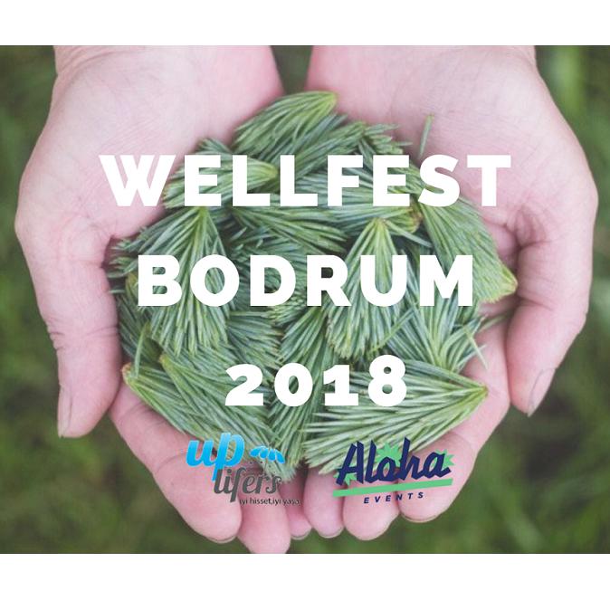 wellfest bodrum bilet - uplifersshop