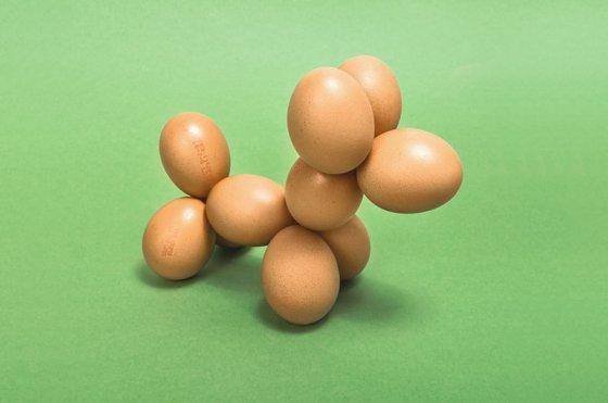 yumurtakopek