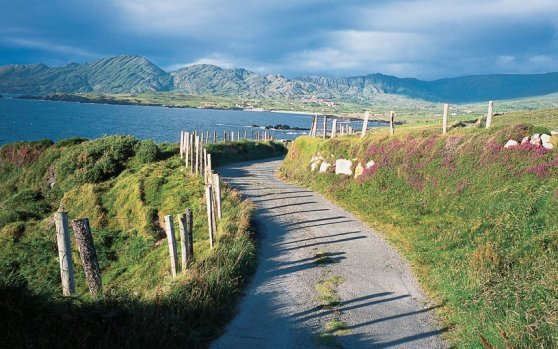 a-narrow-track-winds-its-way-across-the-beara-peninsula-in-cork