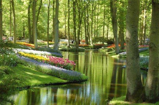 Keukenhof Bahçeleri, Hollanda
